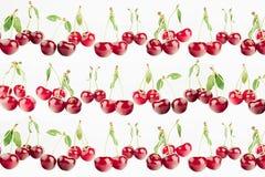 Свежие зрелые вишни с кабелями, листьями на белой предпосылке Предпосылка вишни Стоковое Изображение