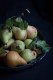 Свежие зрелые груши с листьями Стоковое Изображение RF