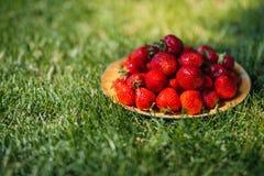 Свежие зрелые клубники на плите на зеленой траве Стоковое Изображение RF