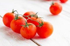 свежие зрелые томаты Стоковые Изображения RF
