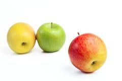Свежие зрелые яблоки Стоковая Фотография RF