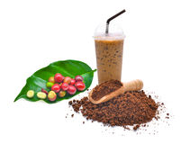 Свежие изолированные семена кофе, порошок кофе и замороженный кофе Стоковое Изображение