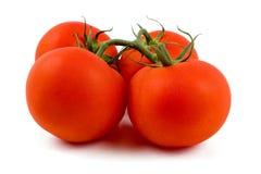свежие изолированные томаты белые Стоковое Изображение