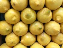 свежие лимоны Стоковая Фотография