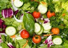 Свежие ингридиенты салата в плане рамки заполнения Стоковые Фотографии RF