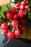 Свежие ингридиенты для редиска здорового †салата «красная Стоковые Изображения