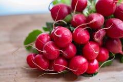 Свежие ингридиенты для редиска здорового †салата «красная Стоковые Фотографии RF