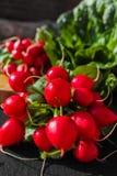 Свежие ингридиенты для редиска и зеленый цвет здорового †салата «красная позволили Стоковое Изображение
