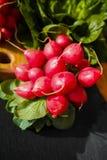 Свежие ингридиенты для редиска и зеленый цвет здорового †салата «красная позволили Стоковая Фотография RF