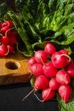 Свежие ингридиенты для редиска и зеленый цвет здорового †салата «красная позволили Стоковое Фото