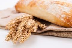 Свежие испеченные белые объекты багета хлеба ciabatta Стоковое фото RF