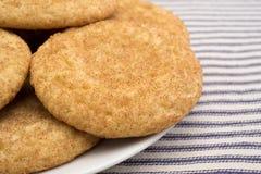Свежие испеченные печенья snickerdoodle на плите Стоковые Фотографии RF