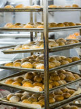 Свежие испеченные хлебцы в шкафах Стоковые Изображения RF