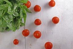 Свежие листья базилика и томаты вишни Стоковое Изображение