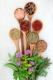 Свежие и высушенные травы и специи стоковое изображение rf