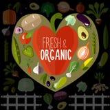 Свежие и органические овощи Иллюстрация штока