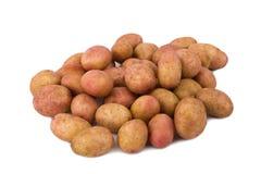 Свежие картошки на белой предпосылке Стоковая Фотография RF