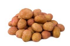 Свежие картошки на белой предпосылке Стоковое фото RF