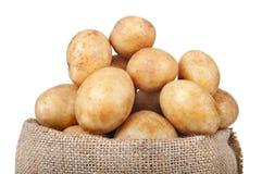 свежие картошки Стоковая Фотография RF