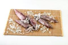 свежие кальмары стоковое изображение