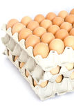 Свежие коричневые яичка на белой предпосылке Стоковые Фото