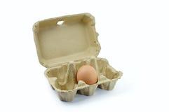 Свежие коробки яичка Стоковые Фото
