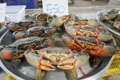 Свежие крабы на рынке морепродуктов фермеров Стоковые Фотографии RF