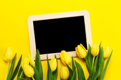 Свежие красивые желтые тюльпаны на желтой красочной предпосылке с стоковое фото