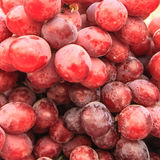 Свежие красные виноградины стоковая фотография