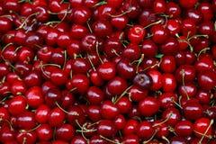 Свежие красные вишни на конце розничного рынка вверх Стоковая Фотография