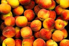 Свежие красные и желтые персики или нектарины Prunus Persica на корзине плодоовощ для продажи в био супермаркете или гастрономе Стоковые Фото
