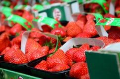Свежие красные клубники аранжировали в корзинах готовых для продажи на рынке Стоковое Изображение
