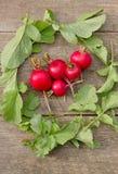 Свежие красные редиски на деревянной поверхности, вертикальной Стоковые Изображения