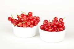 Свежие красные смородины в шаре на белом конце предпосылки вверх Стоковые Фотографии RF