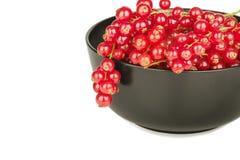 Свежие красные смородины в шаре на белом конце предпосылки вверх Стоковые Изображения RF