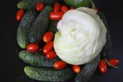 Свежие красные томаты, огурцы, зеленое paperika и салат айсберга на подносе сервировки Стоковые Фотографии RF