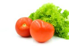 Свежие красные томат и салат на белой предпосылке Стоковое Фото