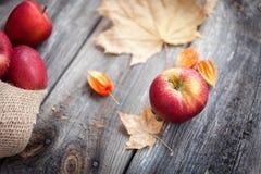 Свежие красные яблоки на деревянной предпосылке Стоковое Изображение RF