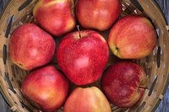 Свежие красные яблоки Стоковая Фотография RF