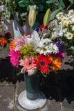 Свежие красочные цветки положенные в вазы Стоковая Фотография RF