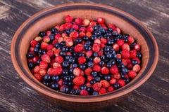 Свежие клубники и голубики, одичалая ягода стоковые изображения rf