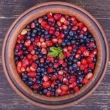 Свежие клубники и голубики, одичалая ягода стоковое фото rf