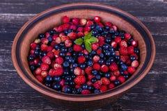 Свежие клубники и голубики, одичалая ягода стоковые фото