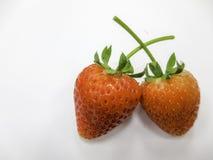 свежие клубники Стоковые Фото