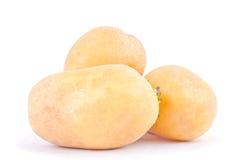 свежие клубни картошек на изолированной еде белой картошки предпосылки здоровой Vegetable Стоковые Фотографии RF