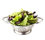 Свежие листья салата Стоковое фото RF