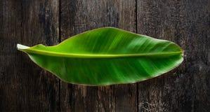Свежие лист банана на древесине Стоковая Фотография