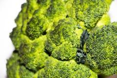 Свежие лож капусты брокколи на белой предпосылке Оно только скомплектовано от сада и готова к использованию стоковое изображение