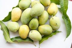 свежие мангоы Стоковые Фотографии RF