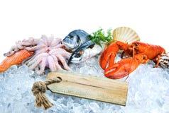 Свежие морепродукты на задавленном льде стоковая фотография rf